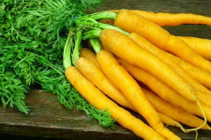 The Benefits Of Carrots